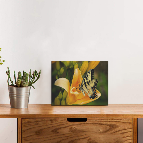 "Butterfly Orange Lily Photo Panel for Tabletop Display 8""x6"""