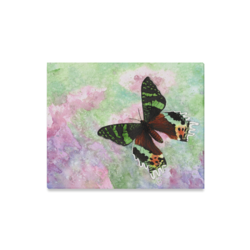 "Sunset moth butterfly Canvas Print 16""x20"""