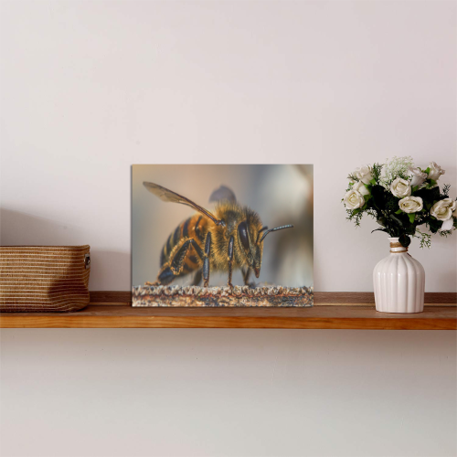"""Bumble Bee Photo Panel for Tabletop Display 8""""x6"""""""