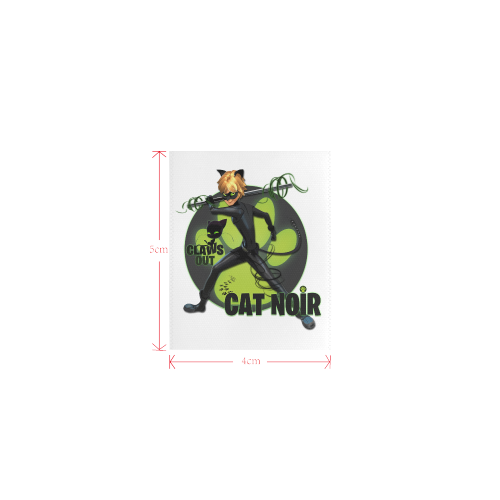 cat noir2 Private Brand Tag on Tops (4cm X 5cm)