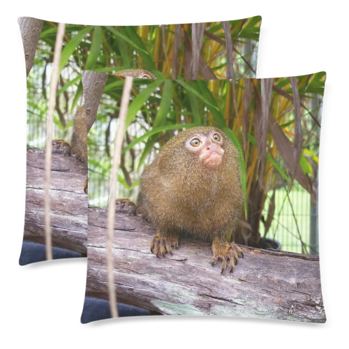 "Ninita Pillows Custom Zippered Pillow Cases 18""x 18"" (Twin Sides) (Set of 2)"