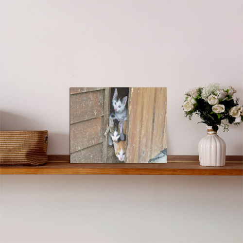 "Barnyard Kittens Photo Panel for Tabletop Display 8""x6"""