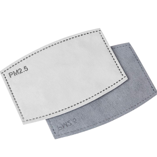 PM2.5 replacement filters Filters (10 pieces)