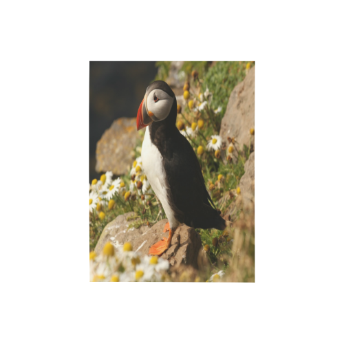 "Pretty Puffin Photo Panel for Tabletop Display 6""x8"""
