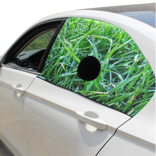Dewy Grass Pet Car Window Curtain