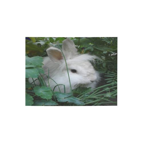 "Precious White Bunny Rabbit Photo Panel for Tabletop Display 8""x6"""